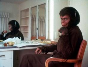 Damn Dirty Ape!