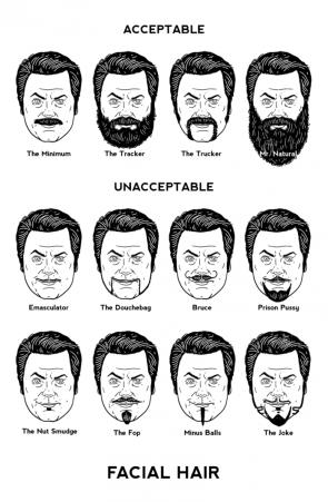 Swanson's facial hair guide