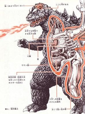 Godzilla Cutaway