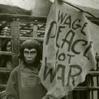Wage Peace Not War
