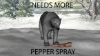 Needs More Pepper Spray