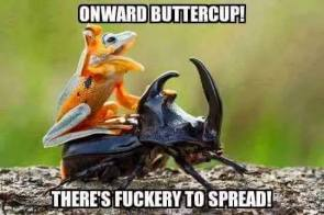 Onward Buttercup