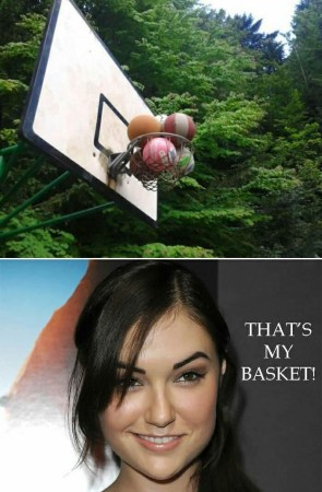 That's My Basket!