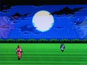 Ninja Gaiden (NES 1989)