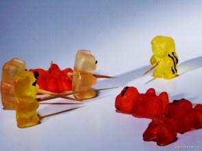 Bears, sweet, sweet beaers.