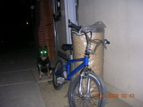 My new bike and alien dog