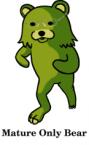 Mature only bear
