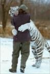 White tiger hugging guy
