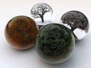 The seasons balls version