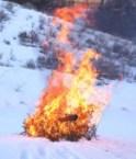 Burning Christmas Tree