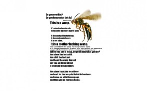 This is a wasp.