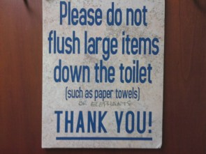Do not flush elephants