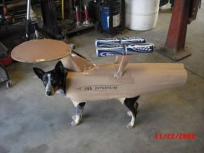 Enterprise Dog Costume