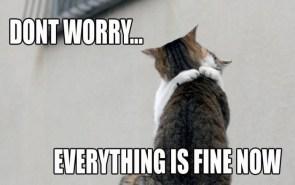Kitty Hug – Don`t Worry