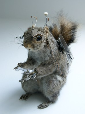 Robo-Squirrel
