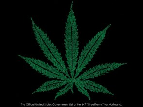 Official US Govt. list of the 647 street terms for Marijuana