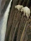 Goats on (Vertical) Walls
