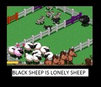 Black sheep is black