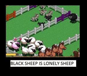 Black sheep is black