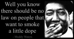 Muddy Waters quote