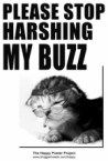 Please stop harshing my buzz