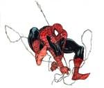 Ballpoint pen & colored marker spiderman2.jpg
