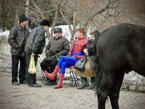 Cold Spiderman