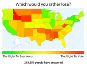 guns vs voting