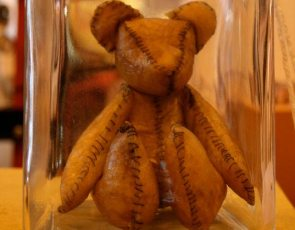 Placenta Teddy Bear