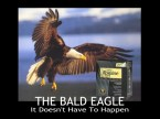 Bad Eagle: It Doesn't Have To Happen