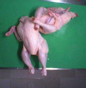 Arm Bar Chickens