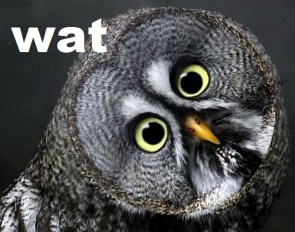 Wat Owl