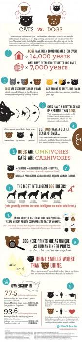 Cats -v- Dogs