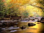Golden_Waters_Great_Smoky Mountains National Park Tennessee