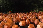A riot of redheads