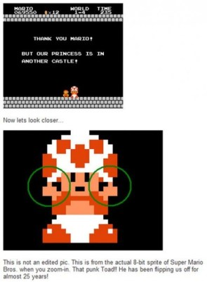 Toad is a punk!
