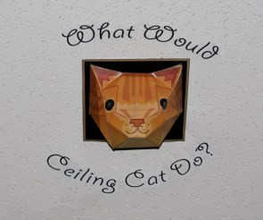 What Would Ceiling Cat Do?