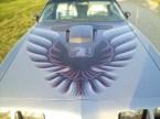 1979 Pontiac Trans-am Anniversary Edition