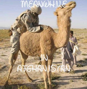 Meanwhile in Afghanistan