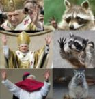 Pope Coon