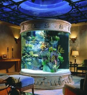 Ornate aquarium