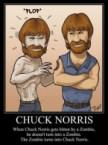 Chuck Norris Bites Zombie