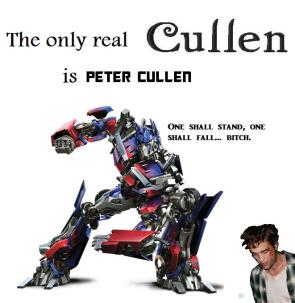 The True Cullen