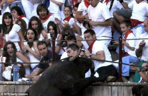 Bull meets Crowd