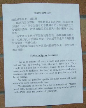 Note At A Buddhist Monastery