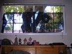 20% window tint in my room