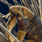 Proudflea vs. Derpworm