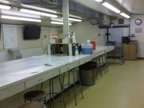 my school's cadaver lab