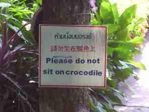 Please do not sit on crocodile