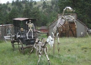 Skeleton Ranch